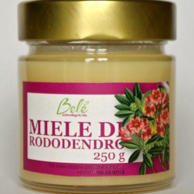 rododendro(2)-2